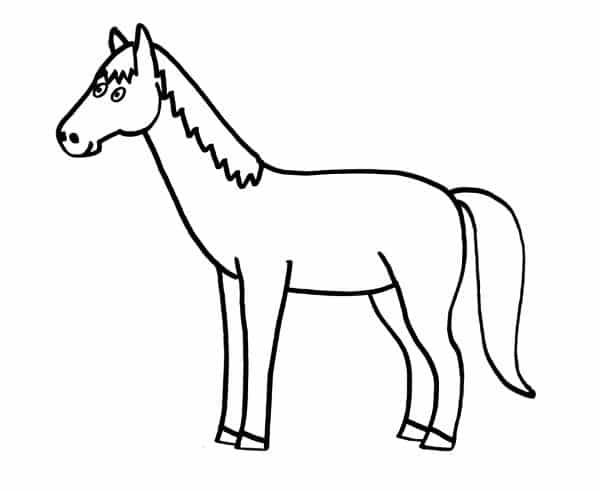 Dibujos de animales domésticos para colorear - Animales para colorear