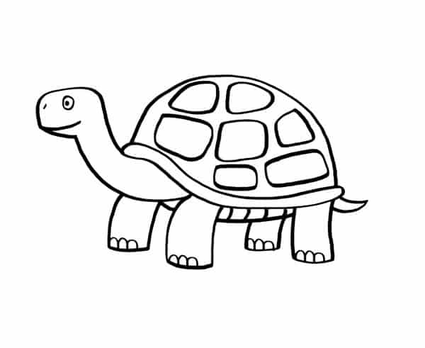 tortuga-para-colorear