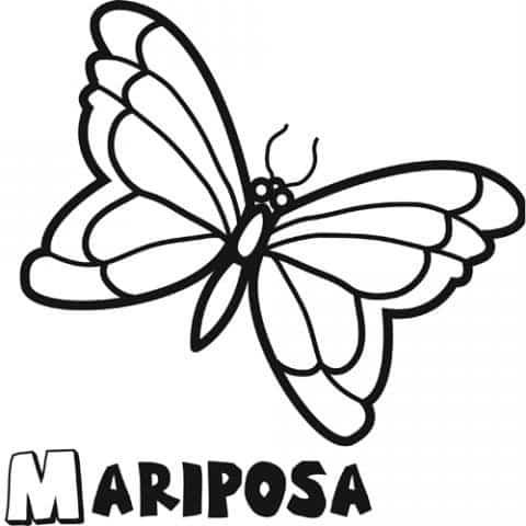 colorear-mariposa