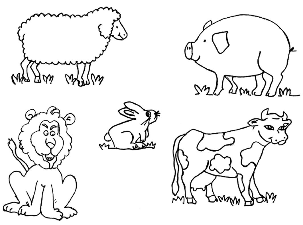 Animales Para Colorear Aprende Sobre Las Especies De La Forma Más